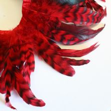 Chinchilla Full Coque Red Feathers 14-18cm Long x 5cm